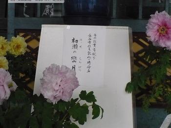 2015_04290063.JPG